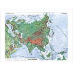 نقشه-قاره-آسیا-طبیعی-و-سیاسی-۵۰-۳۵