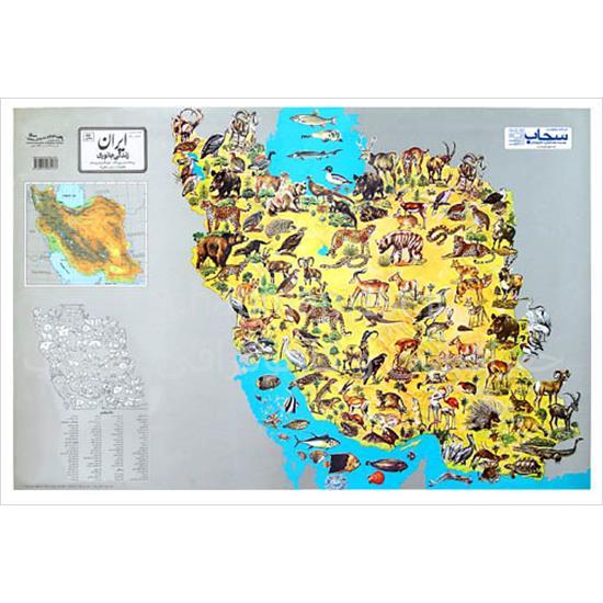 نقشه-مصور-زندگی-جانوری-ایران—فارسی